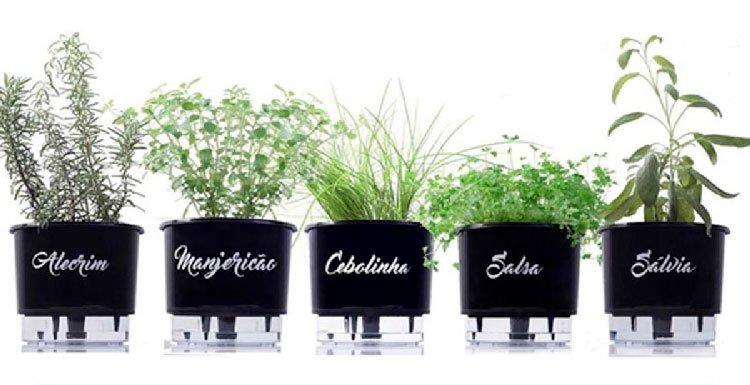 Mini vegetable garden kit for mom