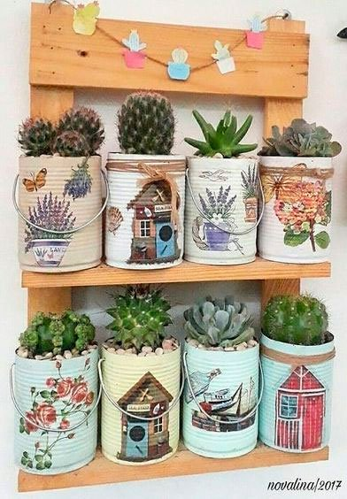 Cactus and succulent set for mom who loves plants