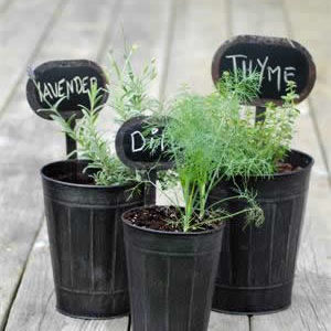1614581144 10 unique gifts for gardeners